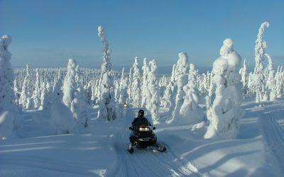 Winter in Lapland!