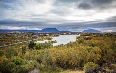Puur natuur in mystiek IJsland