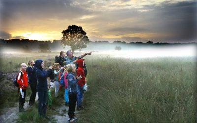 Fietsen van Apeldoorn naar Het Nationale Park De Hoge Veluwe: de groene schatkamer van Nederland
